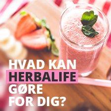 dinherbashop.dk herbalife morgenmad